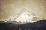 Mount Hood Oregon Prints - Hoods Glory Print by Andrea Hazel Ihlefeld