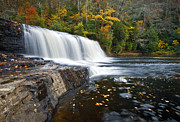 Deciduous Posters - Hooker Falls in Autumn - Fall Foliage in Dupont State Forest Poster by Dave Allen
