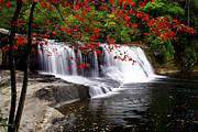 Water Photographs Prints - Hooker Falls Print by Rob Travis