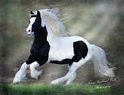 Gypsy Horse Prints - Hope and Glory Print by Terry Kirkland Cook
