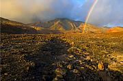 Rainbow Photos - Hope from Desolation by Mike  Dawson