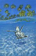 Baby Sea Turtle Paintings - Hope by Jennifer Belote