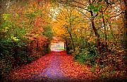 Red Autumn Posters - Hope Poster by Photodream Art