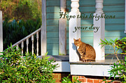 Houses Greeting Cards Framed Prints - Hope This Brightens Your Day Framed Print by Jan Amiss Photography