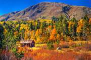 Fall Colors Photos - Hope Valley California Rustic Barn by Scott McGuire