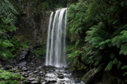 Cullen Photos - Hopetoun Falls by Marion Cullen