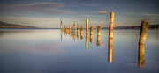 Wooden Post Framed Prints - Horizon Framed Print by Philippe Saire - Photography