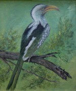 Hornbill Painting Framed Prints - Hornbill Framed Print by Rita Palm