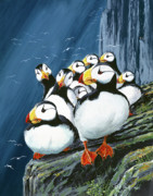 Puffin Paintings - Horned Puffins at rest by Bob Patterson