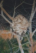 Hornets Nest Paintings - Hornets Nest by Terry Forrest