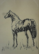 Jungle Pastels Originals - Horse 14 by Mohd Raza-ul Karim