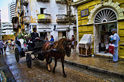 Colombian Framed Prints - Horse and Buggy in old Cartagena Colombia Framed Print by David Smith