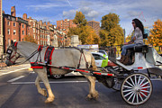 Carriage Horse Photos - Horse and Carriage by Joann Vitali