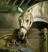 Horse Stable Painting Posters - Horse and kittens Poster by Moritz Muller