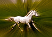 White Unicorn Photos - Horse Art by Steve McKinzie
