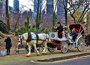 Horse Images Framed Prints - Horse Carriage NYC Framed Print by Chuck Kuhn