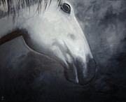 Diana Prickett Metal Prints - Horse Metal Print by Diana Prickett
