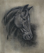 Omar Garza - Horse Drawing II