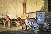 Cobblestone Prints - Horse drawn carriages in Guadalajara Print by Elena Elisseeva