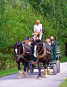 Horse And Cart Art - Horse-drawn Cart - Carsington Water by Rod Johnson