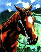 Farah Faizal - Horse