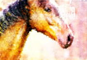 Horse Head Digital Art - Horse Head by Andrea Barbieri