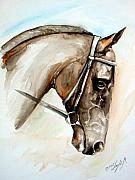 Horse Head Paintings - Horse head by Leyla Munteanu