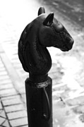 New Orleans Digital Art Posters - Horse Head Pole Hitching Post French Quarter New Orleans Black and White Diffuse Glow Digital Art Poster by Shawn OBrien