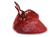Animals Sculptures - Horse hoof blood vessels by Christoph Von Horst