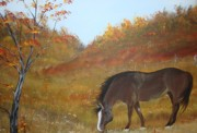 Grazing Horse Originals - Horse in fall by Jena Gillam