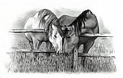 Horses Drawings - Horse Lovers by Joyce Geleynse