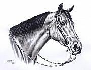 Horse Art - Horse by Murthy S