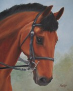 Horse Head Paintings - Horse Portrait by Jindra Noewi