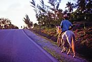 Johnny Sandaire - Horse Ride