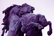Wild Horses Prints - Horse Sculptures Print by Angel  Tarantella