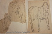 Horse Drawings Prints - Horse Study Sketchbook Print by Jamey Balester