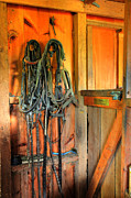 Horse Barn Framed Prints - Horse Tack Framed Print by Paul Ward