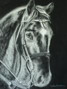 Horse Drawing Posters - Horse with no name Poster by Carla Carson
