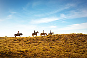 Animal Photos - Horseback Riding by Carlos Caetano