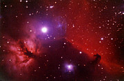 Nebula Posters - Horsehead Nebula In The Belt Of Orion Poster by A. V. Ley