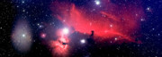 Solitude Digital Art Posters - Horsehead Nebula Panorama Poster by Jim DeLillo