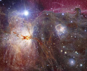 Reflection Nebula Posters - Horsehead Nebula Region In Infrared Poster by Robert Gendler