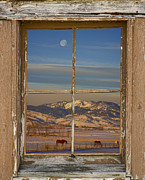 Bo Insogna Framed Prints - Horses and Moon Rustic Farm Window View Framed Print by James Bo Insogna