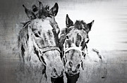 Horse Posters Prints - Horses By The Road Print by Kathy Jennings