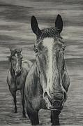 Portraiture Pastels Prints - Horses Print by Jim Figora