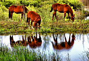 Horses Framed Prints - Horses Mirrored Framed Print by Kristin Elmquist