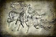 White Horses Mixed Media Prints - Horses Print by Svetlana Sewell
