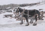 Snowshoes Prints - Horses Wearing Snowshoes Historical Vignette Print by Dawn Senior-Trask