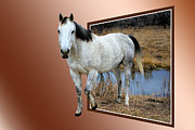 Freedom Mixed Media Metal Prints - Horsing Around Metal Print by Shane Bechler