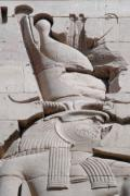 Hathor Metal Prints - Horus at Philae Metal Print by Richard Deurer